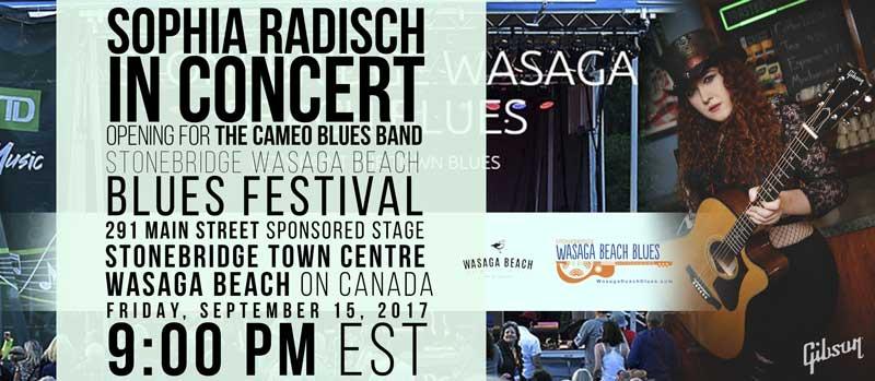 Wasaga Beach Blues Festival Sept. 15
