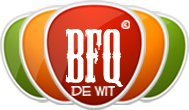 A great web designer: BFQ de Wit, Venlo, Netherlands