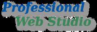 A great web designer: Professional Web Studio, Calgary, Canada