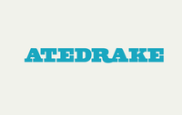 A great web designer: Atedrake, Boston, MA