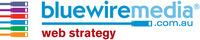 A great web designer: Bluewire Media, Brisbane, Australia logo