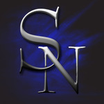 A great web designer: Steel Nerve Designs, Washington DC, DC logo