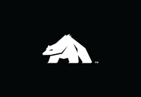 A great web designer: Angry Bear LLC, Asheville, NC