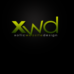 A great web designer: Xotic Website Design, Los Angeles, CA logo