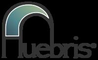 A great web designer: Huebris, Birmingham, AL
