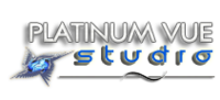 A great web designer: Platinum Vue Studio, Dallas, TX logo
