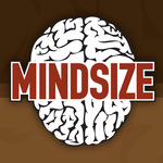 A great web designer: Mindsize Media, Rockford, IL