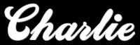 A great web designer: CharlieCharlieCharlie - Web Design Columbia, MO, Columbia, MO logo