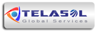 A great web designer: Telasol Global Services, Indore, India logo