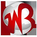 A great web designer: Gowebbaby, Detroit, MI logo