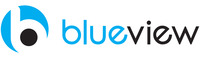 A great web designer: BlueView, Tulsa, OK logo