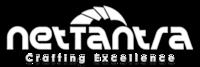 A great web designer: NetTantra Technologies, San Jose, CA logo