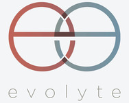 A great web designer: Evolyte, Chicago, IL logo