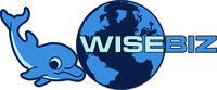 A great web designer: WiseBiz, Toronto, Canada