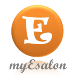 A great web designer: MyESalon, Washington DC, DC logo