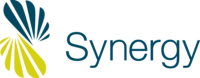 A great web designer: Synergy Networx, New York, NY