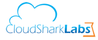 A great web designer: CloudSharkLabs, Los Angeles, CA logo