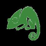 A great web designer: Chameleon Web Services, Birmingham, United Kingdom