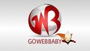 A great web designer: gowebbaby, Southfield, MI