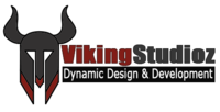 A great web designer: Viking Studioz, Los Angeles, CA logo