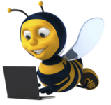 A great web designer: Social Bee Web Marketing and Design, Georgetown, Canada