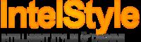 A great web designer: IntelStyle Web Design, London, United Kingdom logo