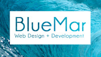 A great web designer: Blue Mar Web Design, Orange County, CA