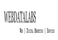 A great web designer: WebDataLabs, Mumbai, India logo