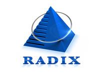 A great web designer: Radixweb, Ahmedabad, India logo