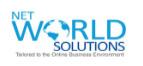 A great web designer: Net World Solutions, New Delhi, India logo
