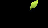 A great web designer: Artik Design, Edmonton, Canada logo