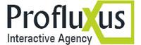 A great web designer: Profluxus Interactive - Profluxus.gr, Athens, Greece logo