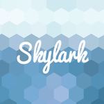 A great web designer: Skylark, Boston, MA
