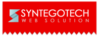 A great web designer: Syntegotech Web Solution, Jaipur, India logo