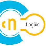 A great web designer: Cybnet logics, Mohali, India logo