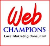 A great web designer: Web Champions™, Saint Louis, MO logo