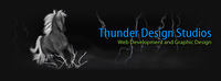 A great web designer: Thunder  Design Studios, Youngstown, OH logo