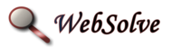 A great web designer: WebSolve, Lake Zurich, IL logo