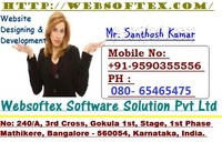 A great web designer: websoftex, India, UT