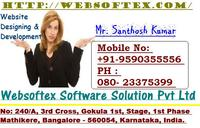 A great web designer: Websoftex Software Solution, India, UT