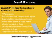 A great web designer: Independant Freelance Developer, San Fransisco, CA