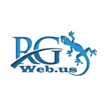 A great web designer: RG Web Solutions, Washington D.c., DC logo