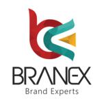 A great web designer: Branex - Web Design Toronto, Toronto, Canada logo