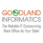 A great web designer: GoodLand Informatics, Texas City, TX