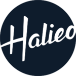A great web designer: Halieo, Chicago, IL logo