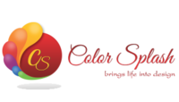 A great web designer: Color Splash, Delhi, India logo