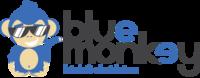 A great web designer: Blue Monkey, São Paulo, Brazil