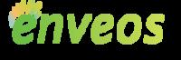 A great web designer: Enveos Creative Web Solutions, Toronto, Canada logo