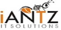 A great web designer: iANTZ IT Solutions | Web Development Company in Kerala, India, Trivandrum, India