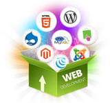 A great web designer: Web Development Company Bangalore, Bangalore City, India